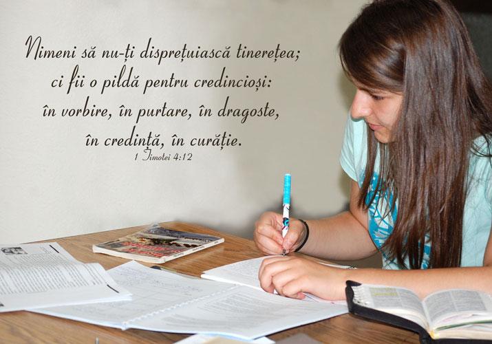 instruirea misionarilor de vara amec